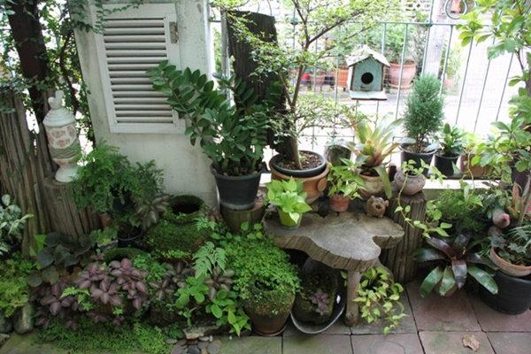 ไอเดียจัดสวนข้างบ้าน